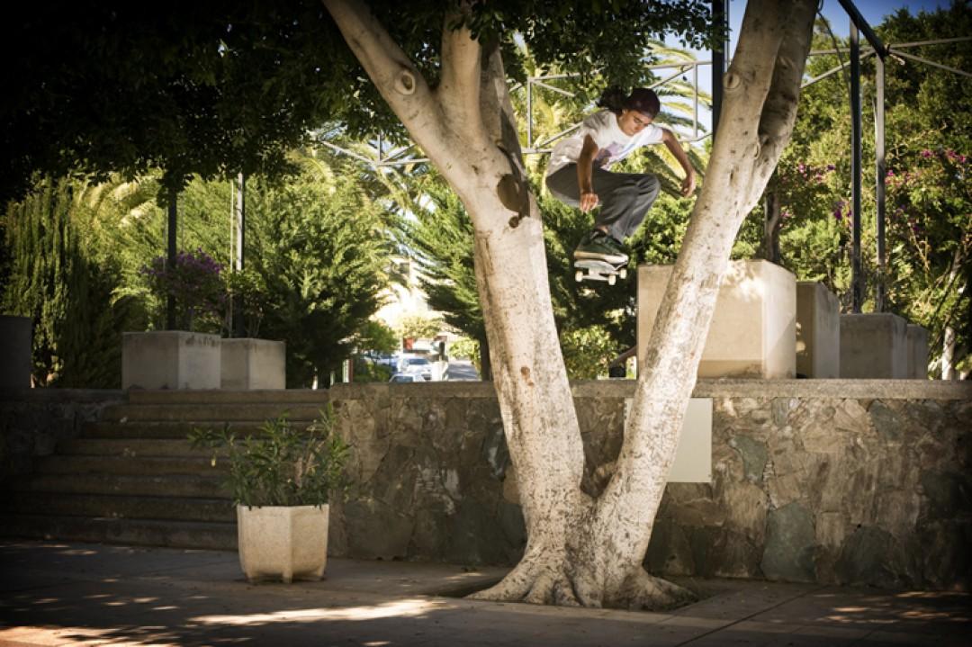 Kevin Rodrigues, ollie.